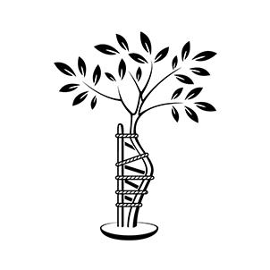 logo_cabinet_white_2